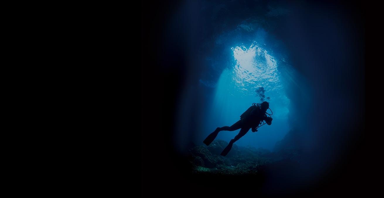Seiko Divers Still Life - Casavola Noci